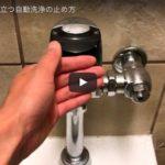 トイトレ/ECに役立つ自動洗浄の止め方(出先のトイレ)